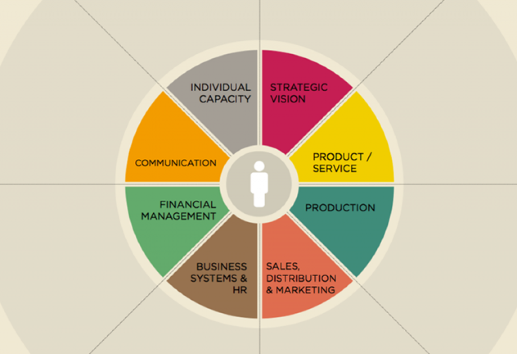 Assessing your strengths and limitations in each of these areas is a first step by working with us.