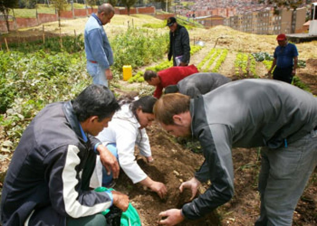 Participatory sowing day